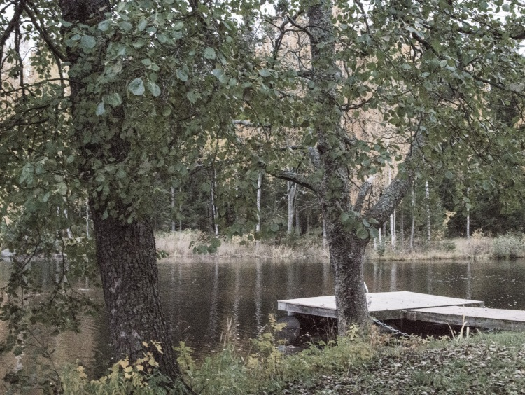 Runebergs stuga (1 of 4)