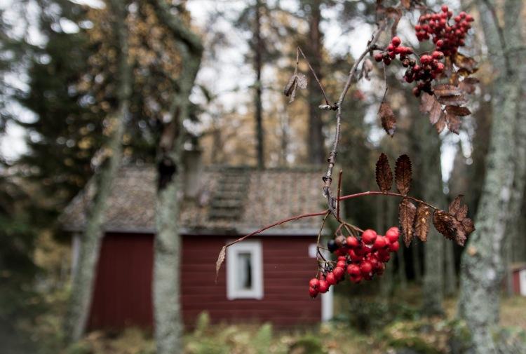 Runebergs stuga1 (3 of 3)