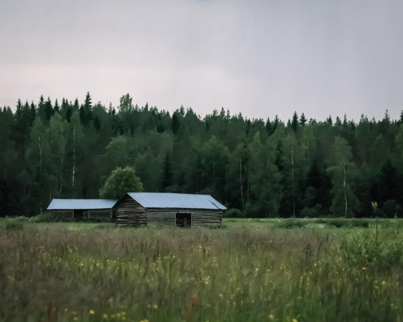 Midsommar Kaustinen-2